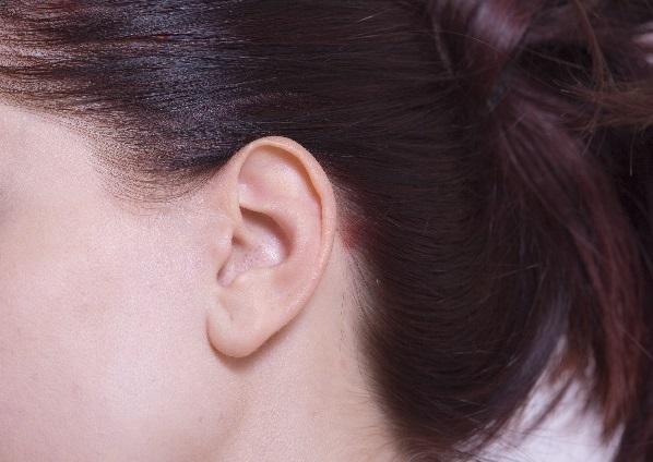 東洋医学耳ツボに注目