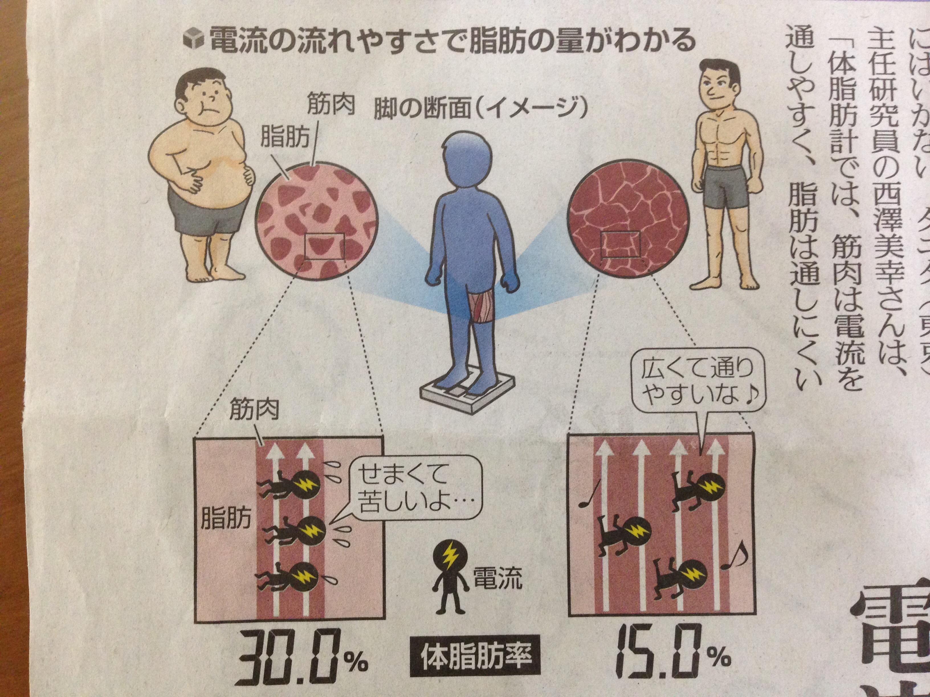 体脂肪率の仕組み。