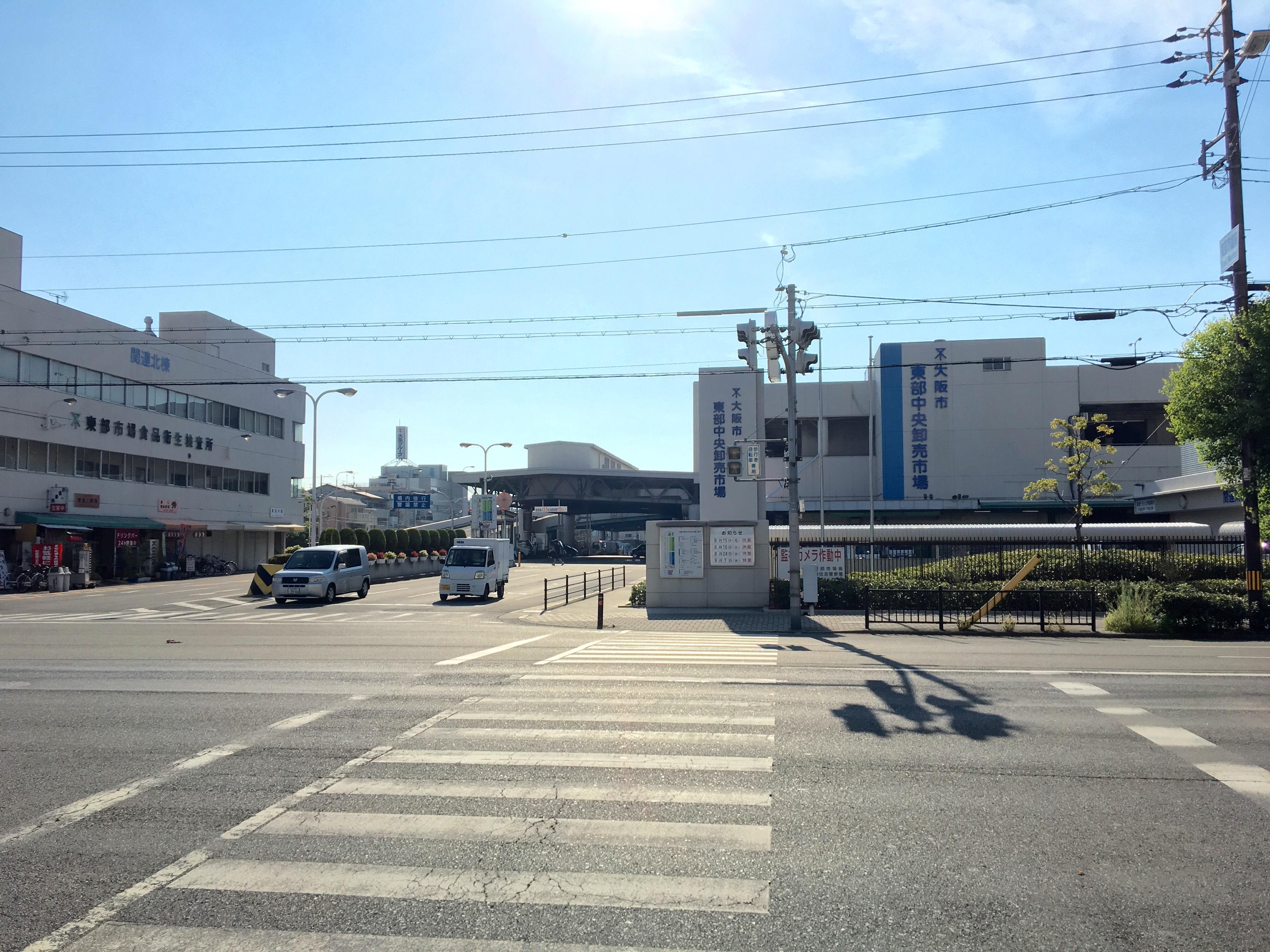 昨日は松原から鶴橋まで朝ランニング。