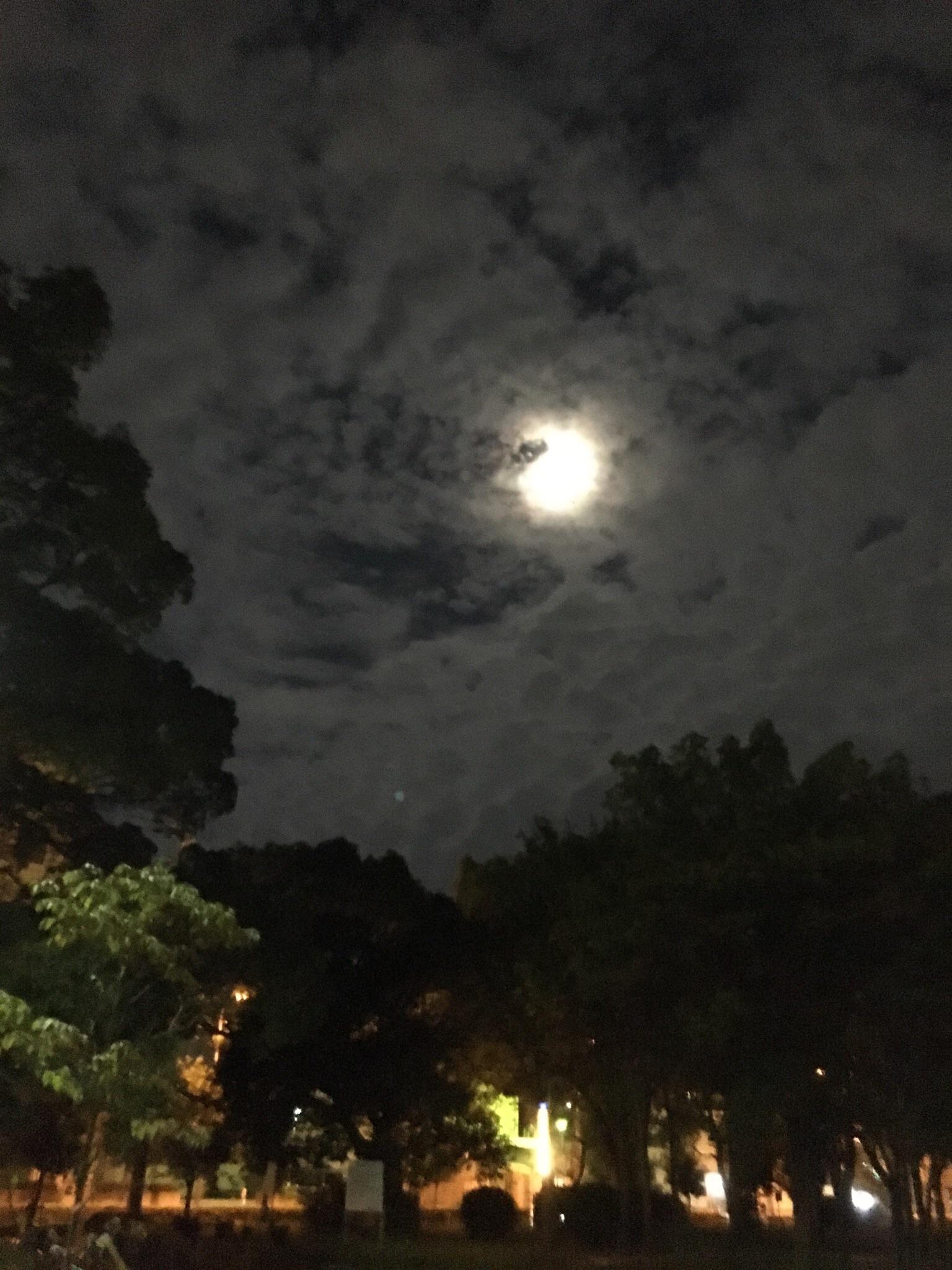 天王寺ー松原 十五夜ランニング🎵