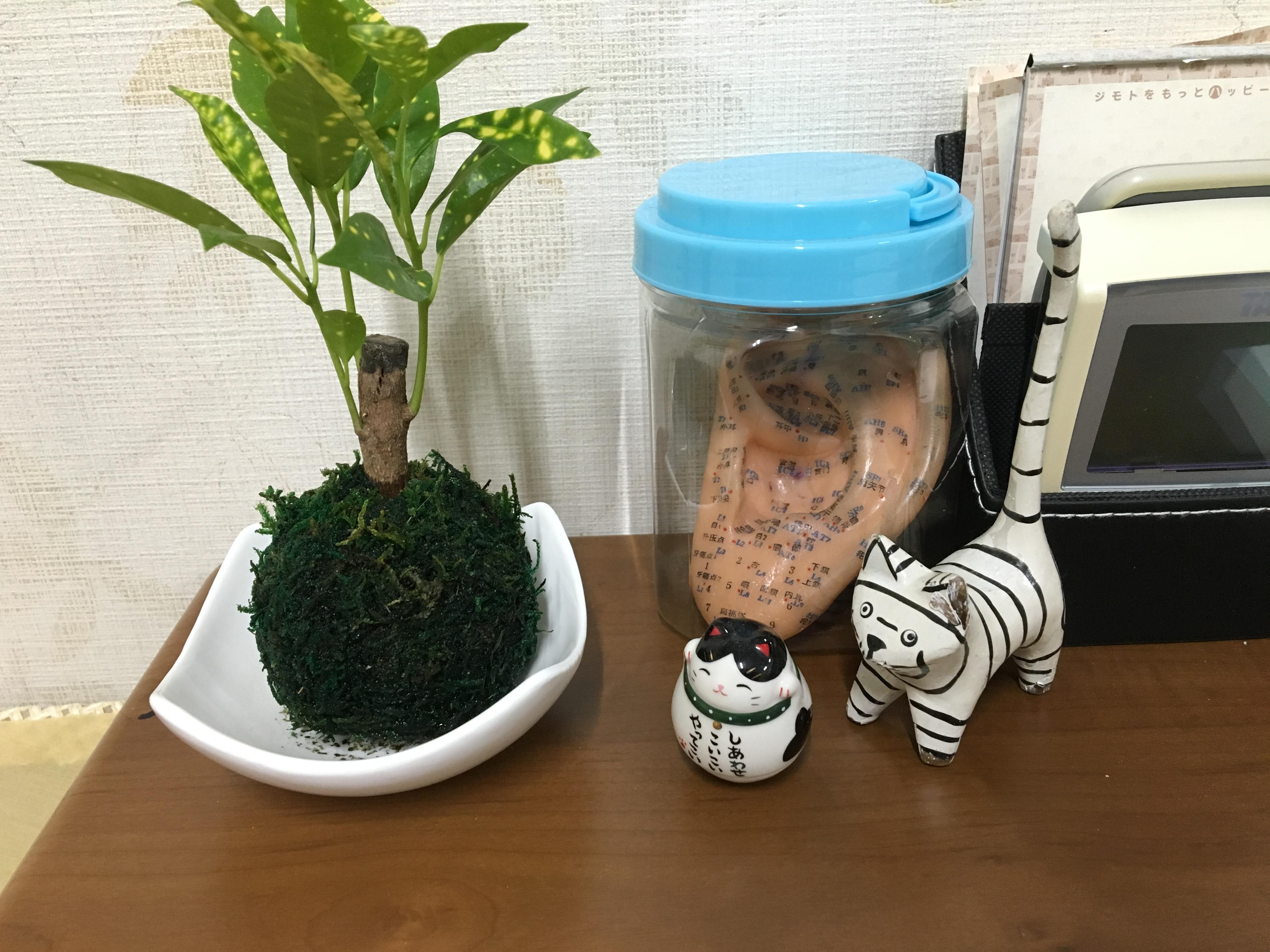 9月一番痩せた方は堺市のYさんでした。