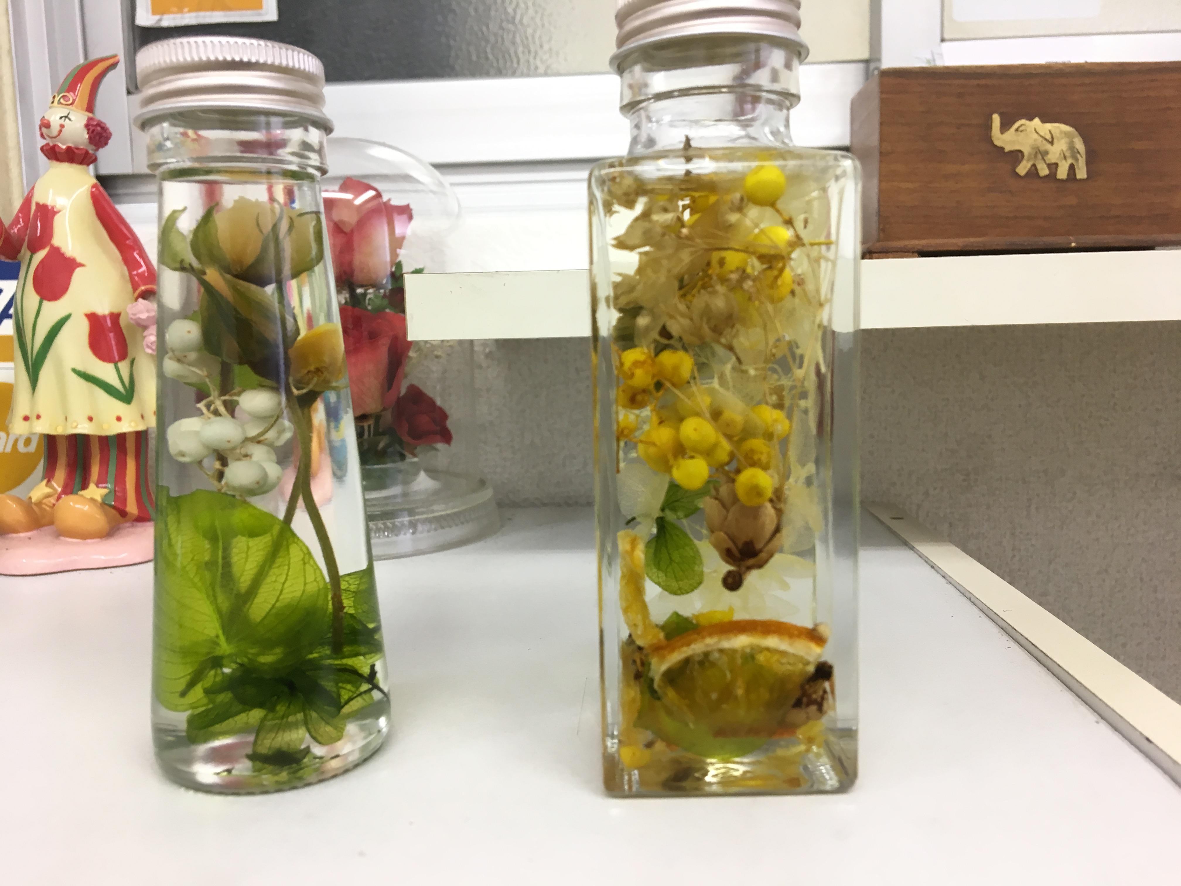 [ブログ]植物の小瓶頂きました(^。^)7年ぶりの再チャレンジ。