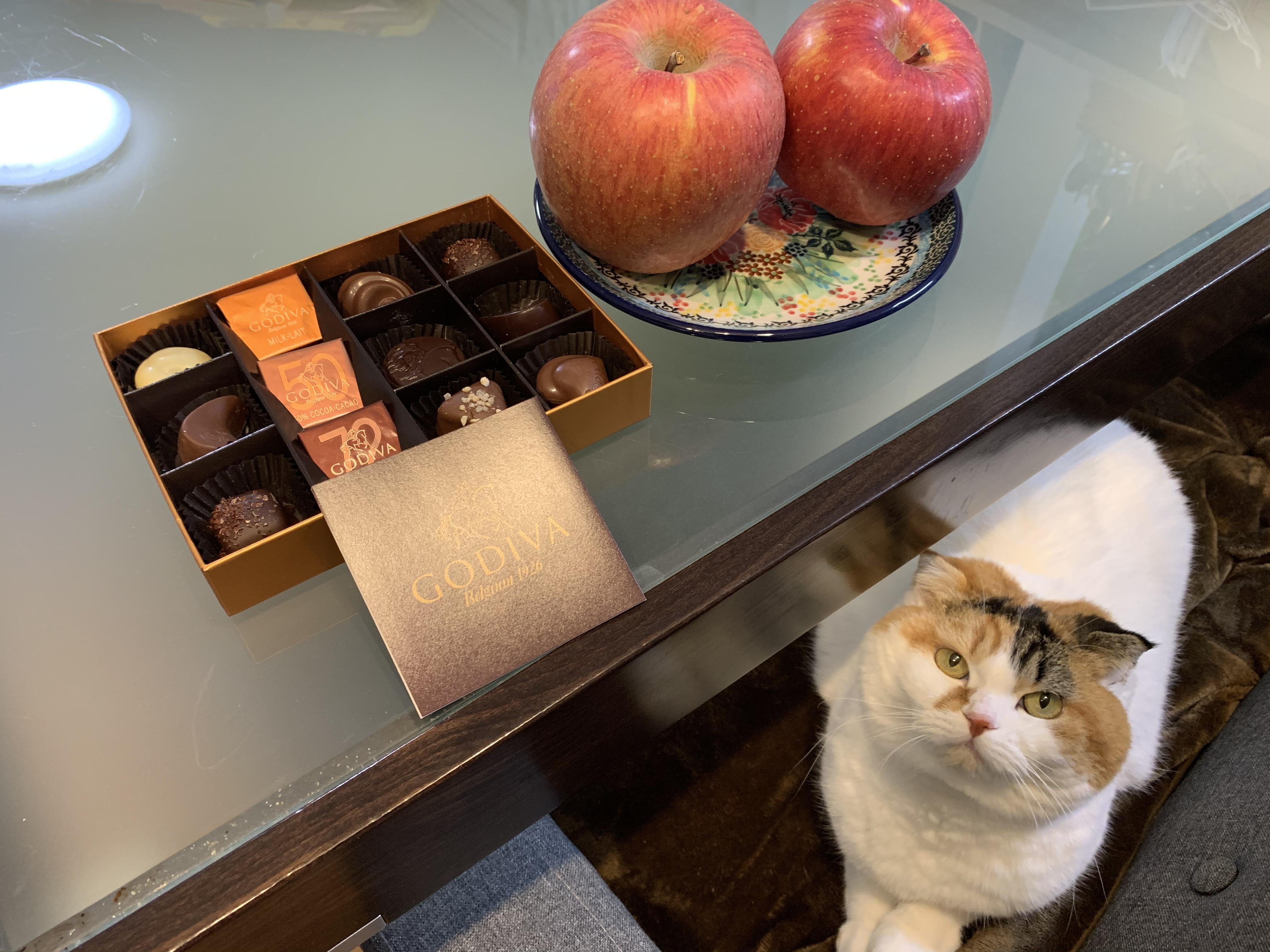 [ブログ]大きなリンゴとGODIVA   とれんげちゃん